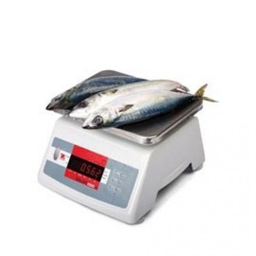 VALOR™ 1000 COMPACT WASHDOWN FOOD SCALES